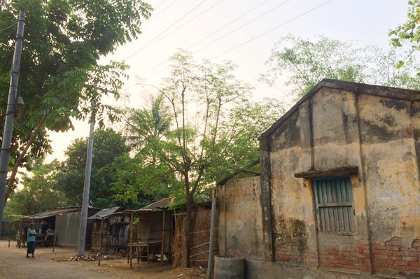 こんな自然豊かな場所で活動しているのは、バングラデシュのスワローズという生産者団体